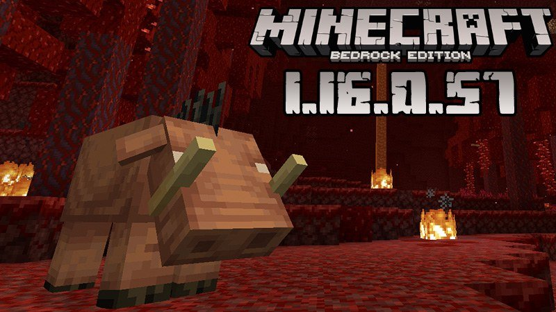 Download beta version of Minecraft 1.16.0.57 Nether Update - APK for Free  PlanetMCPE